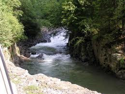 местность Карпатских гор